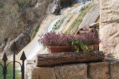 Florero del brezo y rueda de molino Imagen de archivo libre de regalías