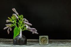 Florero del reloj de las flores Imágenes de archivo libres de regalías