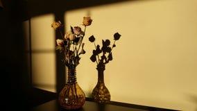 Florero del vidrio de la sombra Fotografía de archivo
