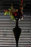 Florero en la ventana, interior oscuro fresco Imagen de archivo