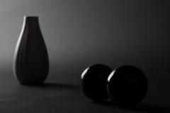 Florero en obscuridad Imagen de archivo libre de regalías