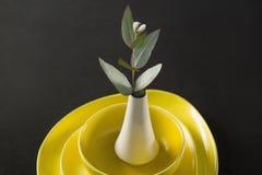 Florero guardado en la loza de la porcelana imágenes de archivo libres de regalías