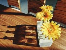 Florero mínimo con color amarillo fotos de archivo libres de regalías