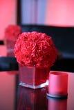 Florero rojo Fotos de archivo