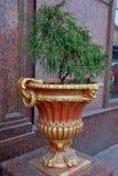Florero rojo con el dorado para las flores en la calle fotos de archivo