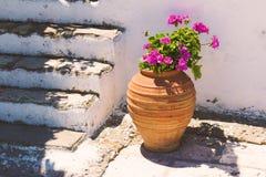 Florero típico con las flores en Grecia en la pared blanca Imágenes de archivo libres de regalías