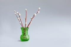 Florero verde con las ramitas del sauce en un fondo gris Concepto del día de fiesta de Domingo de Ramos, ramas de sauce del gatit Imagenes de archivo
