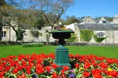 Florero y macizo de flores del jardín Foto de archivo