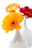 Floreros Imagen de archivo