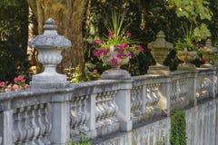 Floreros con las flores Fotografía de archivo