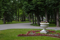 Floreros con las flores en el parque Imagen de archivo