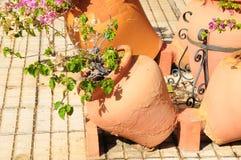 Floreros de la terracota Imagenes de archivo