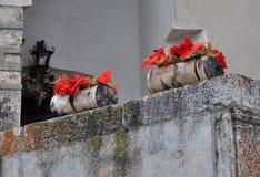 2 floreros de piedra con las flores Imagen de archivo libre de regalías
