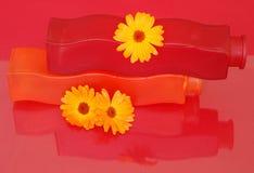 Floreros rojos y anaranjados Imágenes de archivo libres de regalías