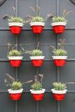 Floreros rojos y blancos Foto de archivo libre de regalías