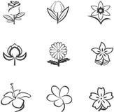 Floresça ícones Fotos de Stock
