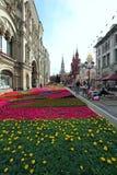 Floresça ajardinar na rua de Nikolskaya no centro histórico do Mo Imagens de Stock