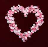 Floresça as pétalas em uma forma do coração imagem de stock