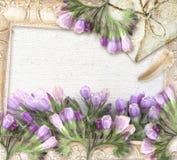 Floresça cumprimentando o cartão retro com lugar para seu texto Imagem de Stock