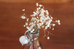 Floresça a decoração Foto de Stock
