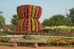 Floresça a florescência no festival asiático 2012 da flor de Chiangrai. Foto de Stock
