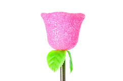 Floresça a lembrança da rosa do rosa do plástico em um fundo branco Imagens de Stock Royalty Free