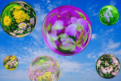 Floresça no efeito da bola de vidro com fundo do céu azul Foto de Stock