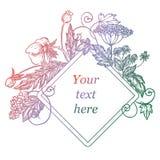 Floresça o frame Esboço do vetor Imagens de Stock Royalty Free