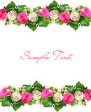 Floresça o fundo com estrutura Fotos de Stock Royalty Free