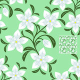 Floresça o teste padrão sem emenda com as flores brancas no verde ilustração do vetor