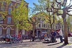 Flores, árvores, mola, verão, brilhante, roxo, vermelho, cor, curso, Europa, Amsterdão, verde, tulipas, roxo, branco foto de stock
