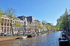 Flores, árvores, mola, verão, brilhante, roxo, vermelho, cor, curso, Europa, Amsterdão, verde, tulipas, roxo, branco, arquitetura fotografia de stock