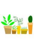 Flores 01 Imagens de Stock