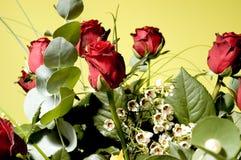 Flores 1 Fotografía de archivo libre de regalías