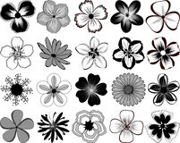 Flores. Imagens de Stock Royalty Free