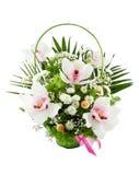 Flores. Fotos de archivo
