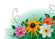Flores Fotografía de archivo