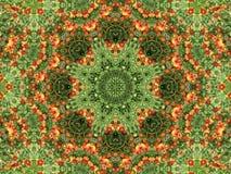 Flores abstractas fotografía de archivo libre de regalías