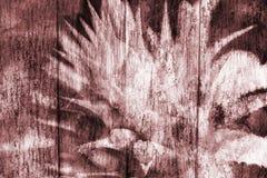 Flores abstractas del rosa de la piña en de madera fotos de archivo libres de regalías
