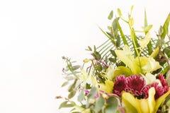 Flores agradáveis fotografia de stock
