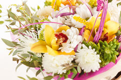 Flores agradables Imágenes de archivo libres de regalías