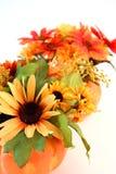 Flores aisladas de Víspera de Todos los Santos Foto de archivo libre de regalías