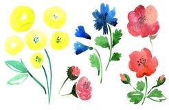 Flores ajustadas Imagens de Stock Royalty Free