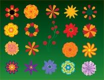 Flores ajustadas Foto de Stock