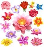Flores ajustadas Ilustração do Vetor