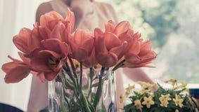 Flores alaranjadas e amarelas bonitas fotos de stock royalty free