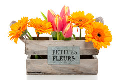 Flores alaranjadas em uma caixa de madeira Fotografia de Stock