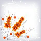 Flores alaranjadas, fundo Foto de Stock