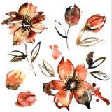 Flores alaranjadas pintados à mão da aquarela bonito invitation Cartão de casamento Cartão de aniversário Imagens de Stock