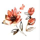 Flores alaranjadas pintados à mão da aquarela bonito invitation Cartão de casamento Cartão de aniversário Foto de Stock